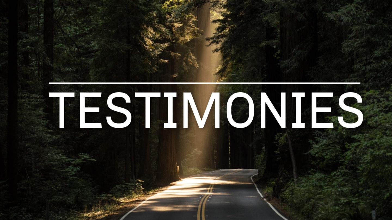 Témoignages / Testimonies